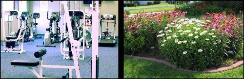 Gym-or-Gardeing