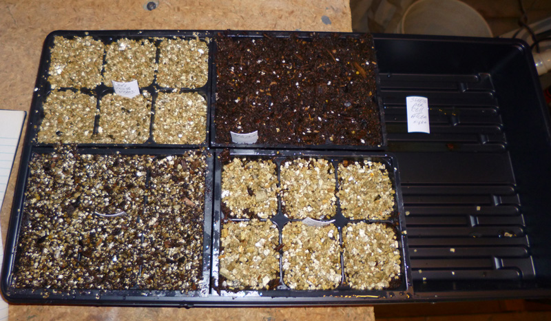 vermiculite-seed-starting-t