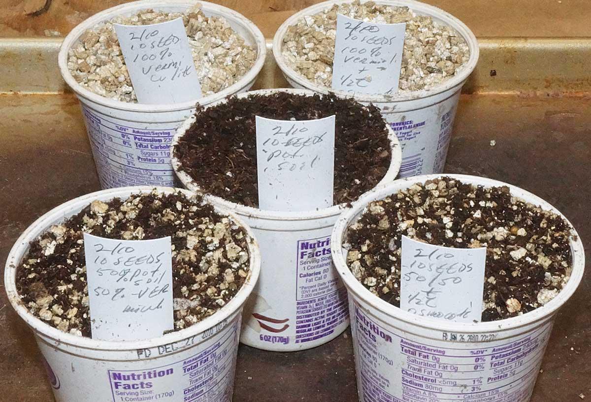 seed-test