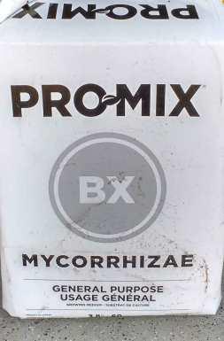 promix-bx-myco