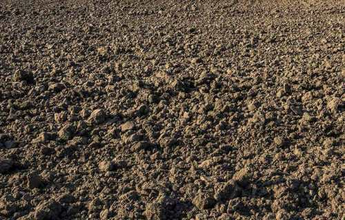 soil-plowed-flickr-800