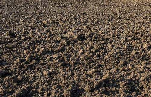 soil-plowed-flickr-800