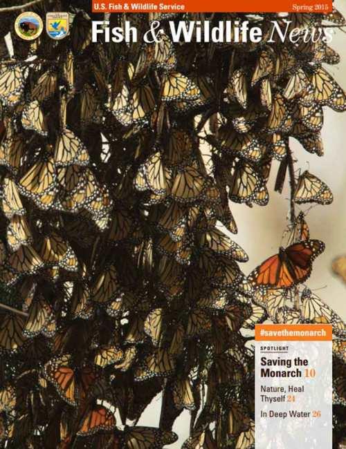 fish-wilkdlife-news-spring-2015