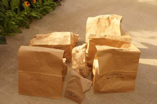 bags-of-seeds