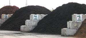 compost-black-gold